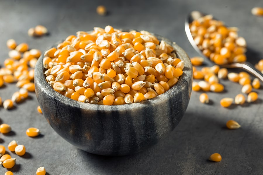 Franklin's Gourmet Organic Popcorn Kernels- Best Organic